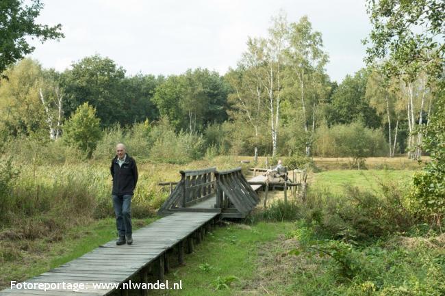 Groene Wissel Riel