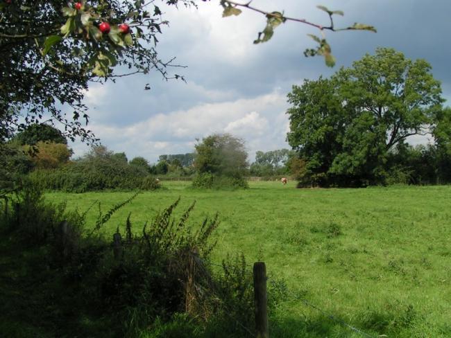 Een oud landschap-de kleine tocht