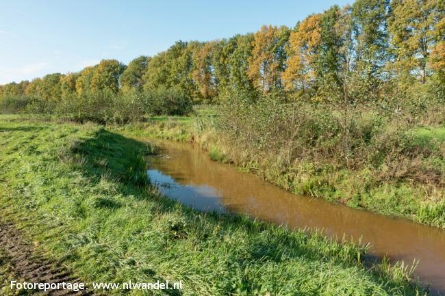 Groene Wissel Mill