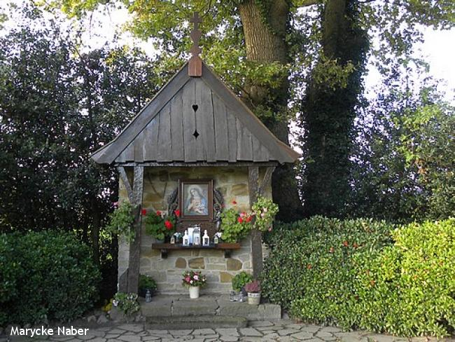 Kapelletjespad De Lutte - rondje Tankenberg