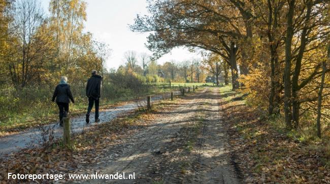 Groene Wissel Nistelrode