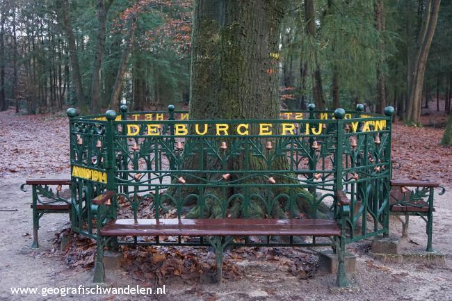 Rondje Lunterse Buurtbosch
