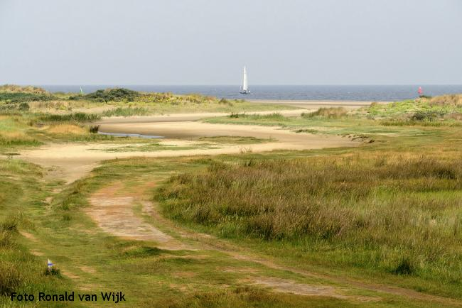 Hotspot Bloeiende duinen: Kwade Hoek, Goeree