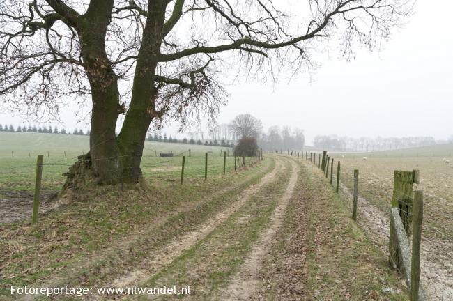 Groene Wissel Sittard