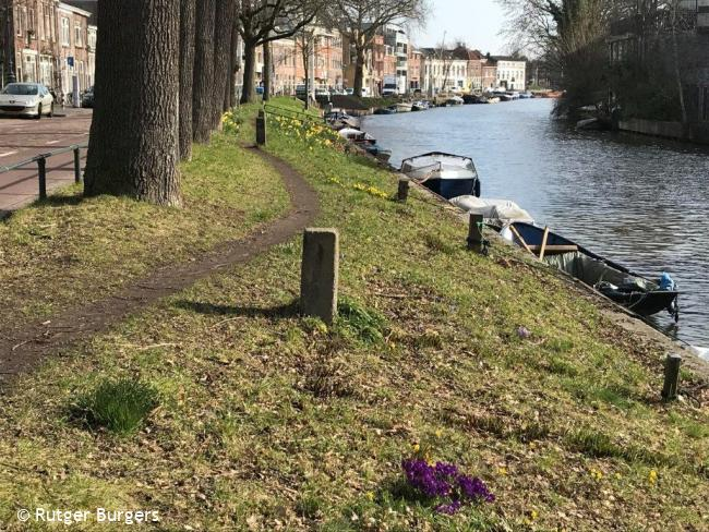 Trage Tocht Utrecht (stadse tochten)