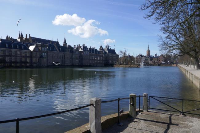 Wandelend langs de Haagse Beek