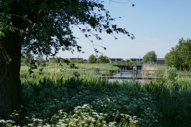 Rijswijk; in en rondom (versie 11 km; zuid-westelijke lus)