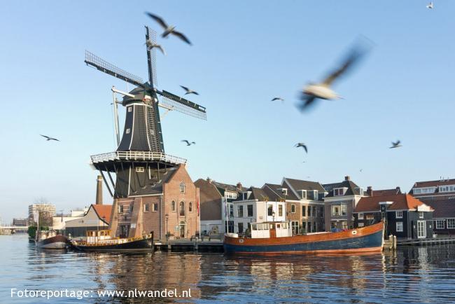 Groene Wissel Haarlem 1