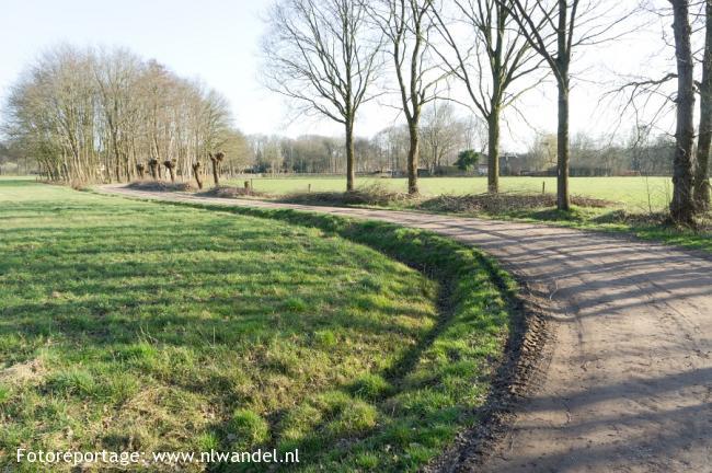 Groene Wissel Heino