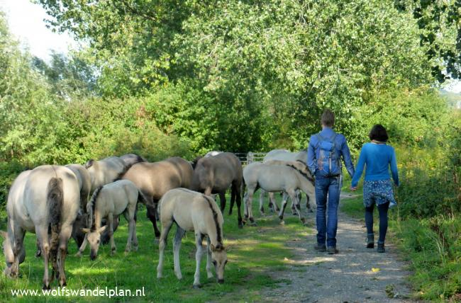 Trage Tocht Arnhem Meinerswijk