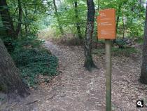 Boswachterij Oostereng
