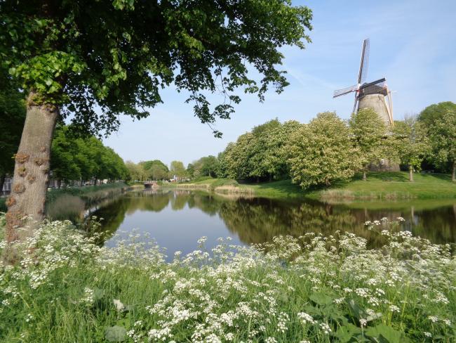 Middelburg in en om de stad