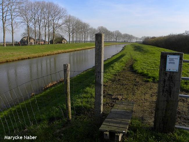 Wandelsporen Zwolle - Heino