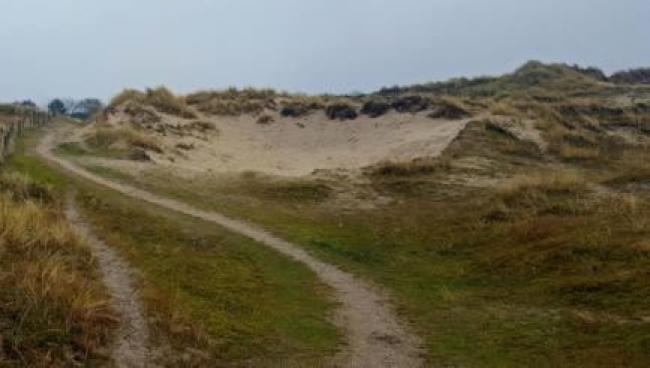 NS-wandeling Helderse Duinen