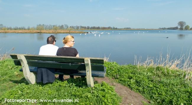Groene Wissel Polsbroekerdam