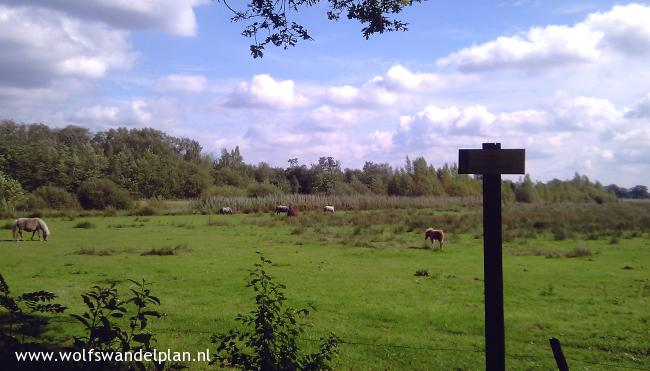 Trage Tocht Wisselse Veen