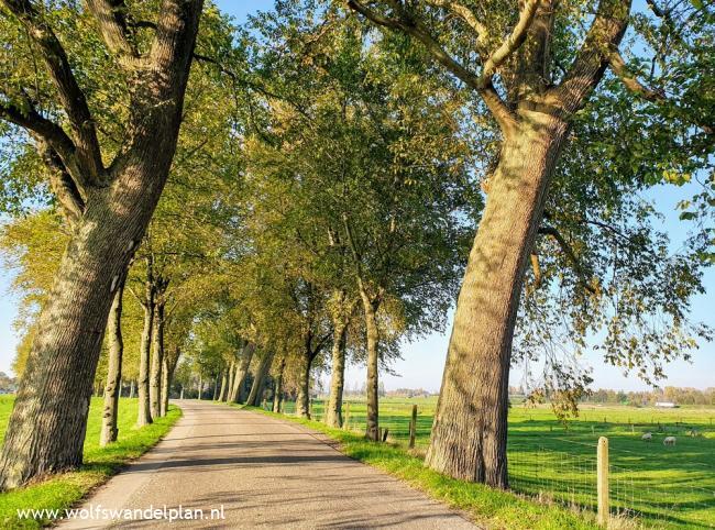 Trage Tocht Kampen (stadse tocht)
