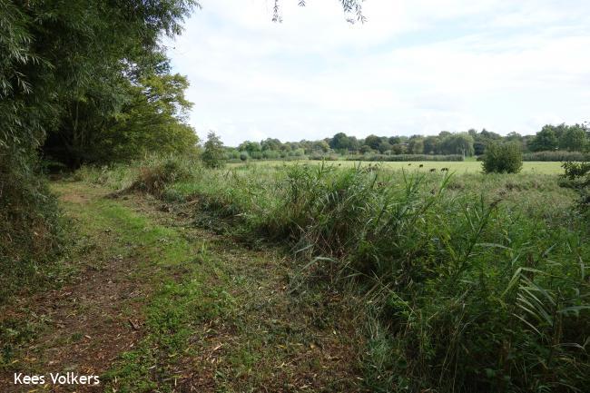 Diemen Rondje Ringdijk
