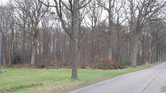 Rond Prinsenbeek
