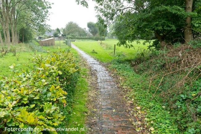 Groene Wissel Delfzijl-West