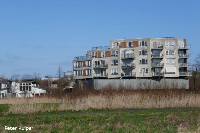 Delft: Voorhof, Buitenhof en Tanthof (F)