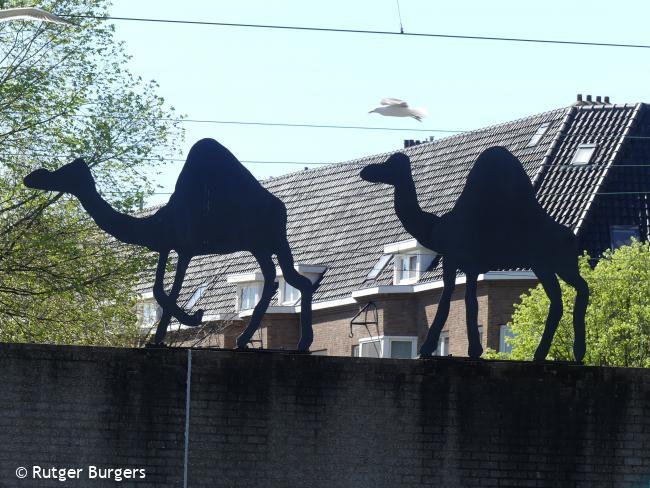 Trage Tocht Amsterdam Watergraafsmeer (stadse tocht)