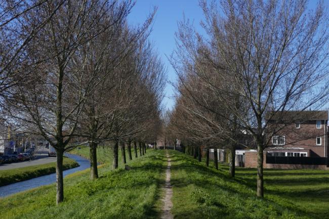 Wateringse Veld