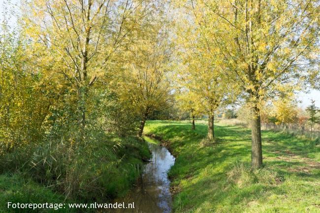 Groene Wissel Horst-Sevenum