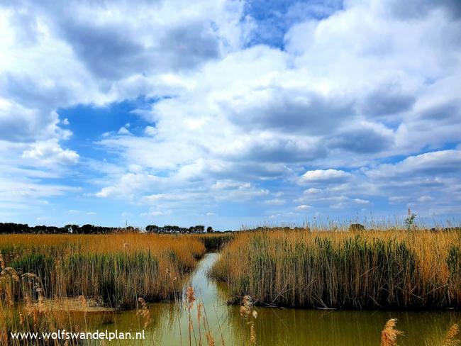 Trage Tocht Arnhem Waterrijk (stadse tocht)
