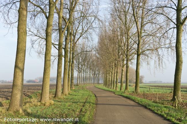 Groene Wissel Lage Zwaluwe