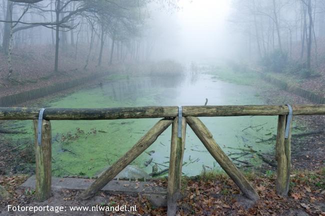 Groene Wissel Oudenbosch