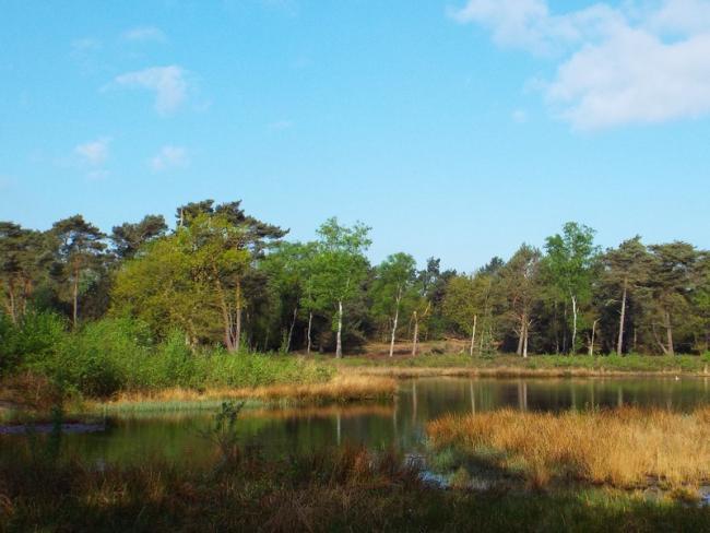 Gennepse Heide-tocht
