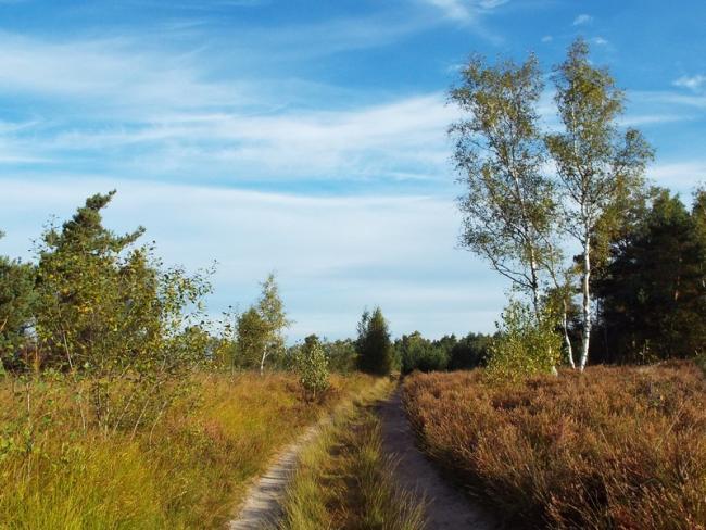 Spijkertse Heide-tocht