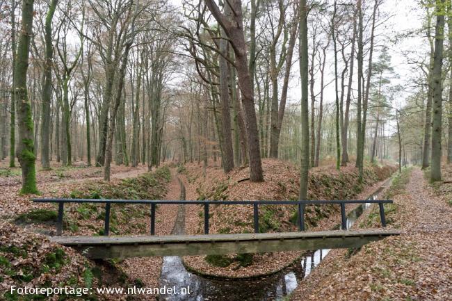 Groene Wissel Apeldoorn 1