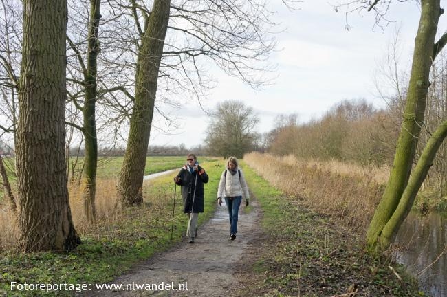 Groene Wissel Amsterdam-Zuid