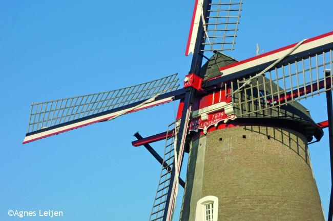 Groeten uit Lieshout