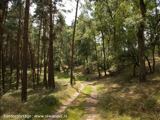 Etappe 15: Posbank - Laag-Soeren