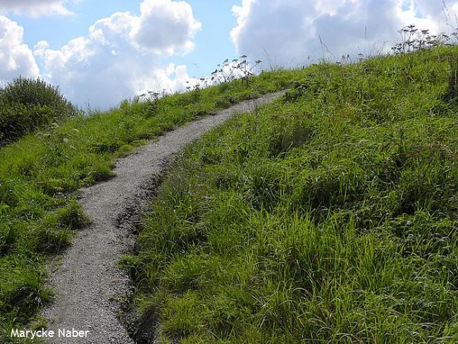 Bijzondere bergwandeling Fochteloërveen