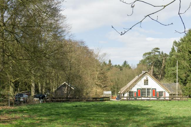 StationsOmmetje Hollandsche Rading