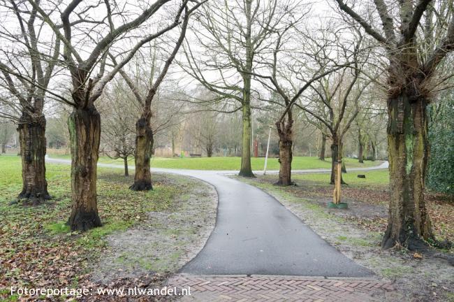Groene Wissel Den Haag-Mariahoeve