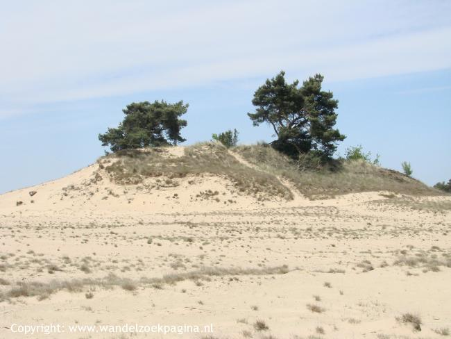 Etappe 6: Kootwijk - Harskamp