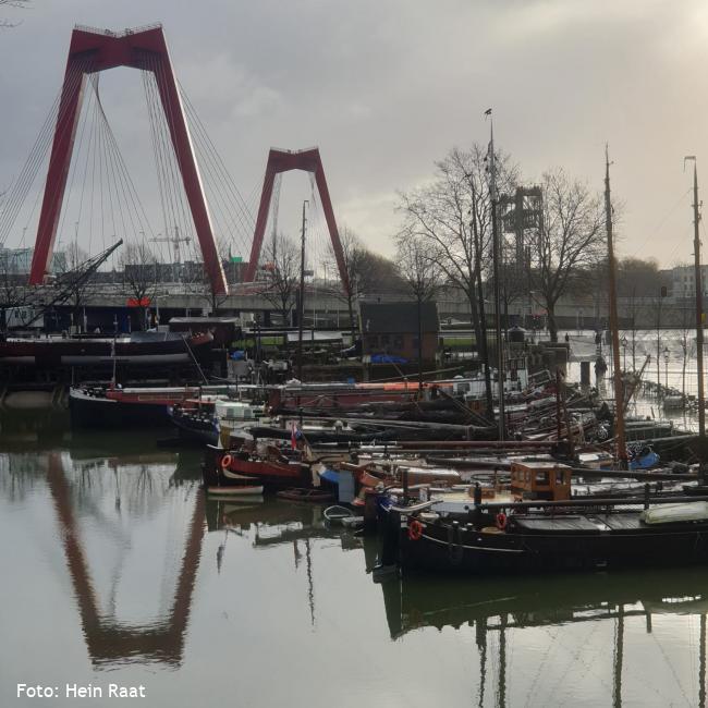 Herleefde havens Rotterdam