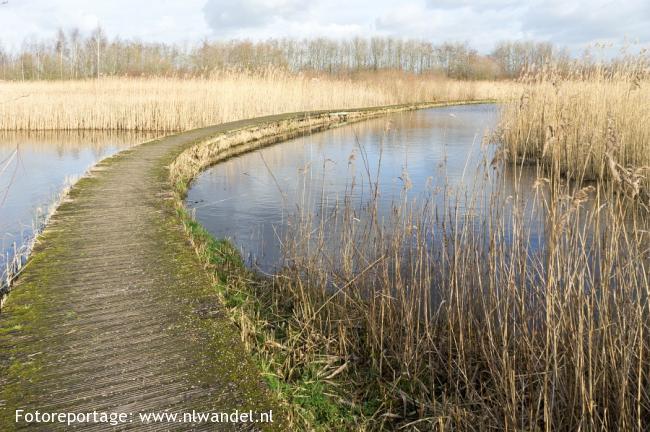 Groene Wissel Nieuwerkerk aan den IJssel