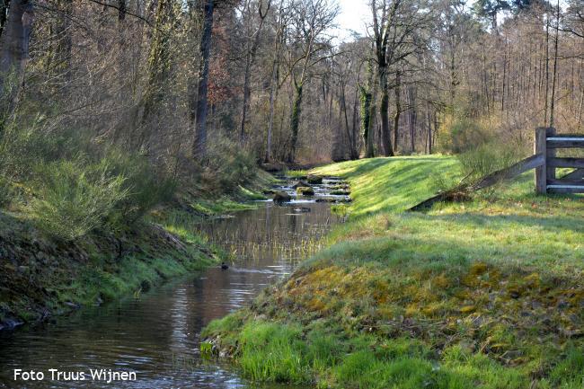 Middeleeuws waterbeheer