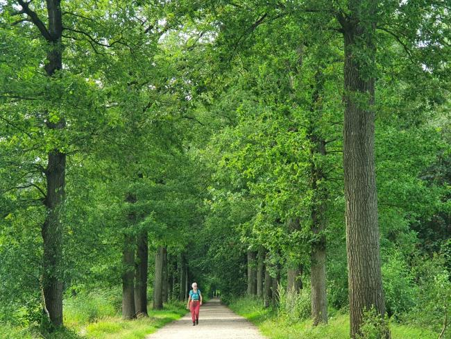 Trage Tocht Woudenberg 2