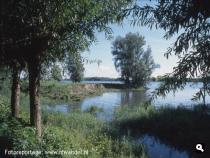 Klein Profijt, Oude Maas.