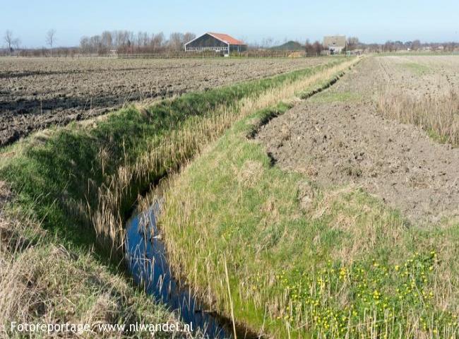 Groene Wissel Serooskerke (Walcheren)