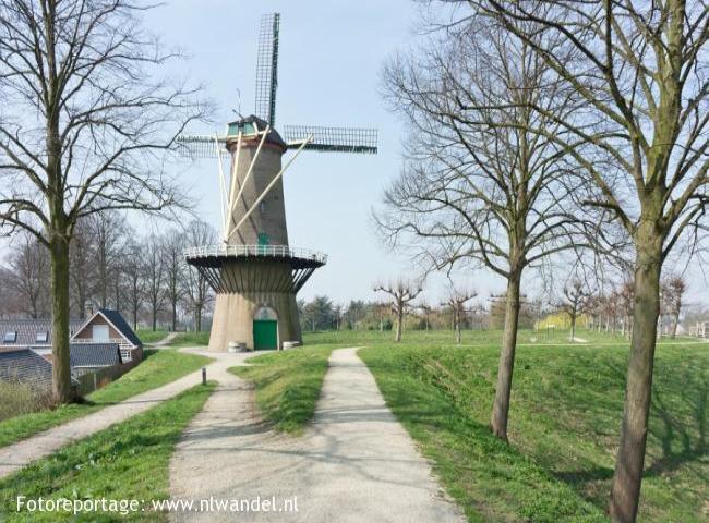 Groene Wissel Hulst 1