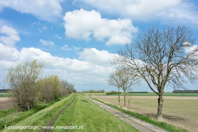 Groene Wissel Cadzand-Bad