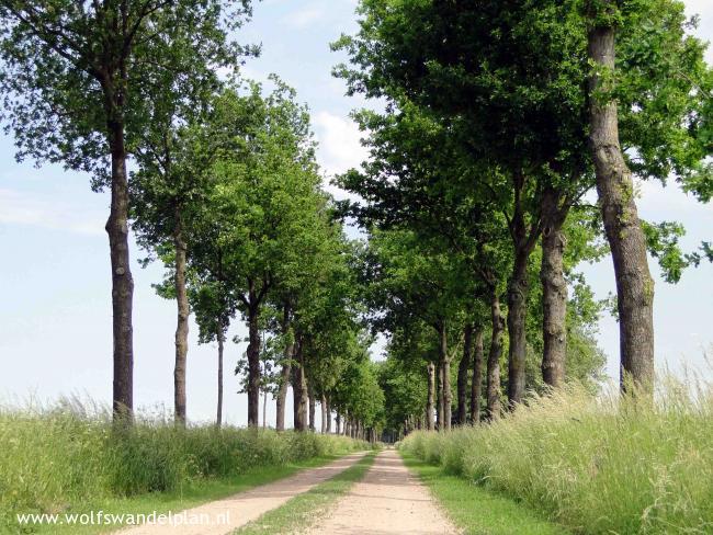 Trage Tocht Winterswijk Corle